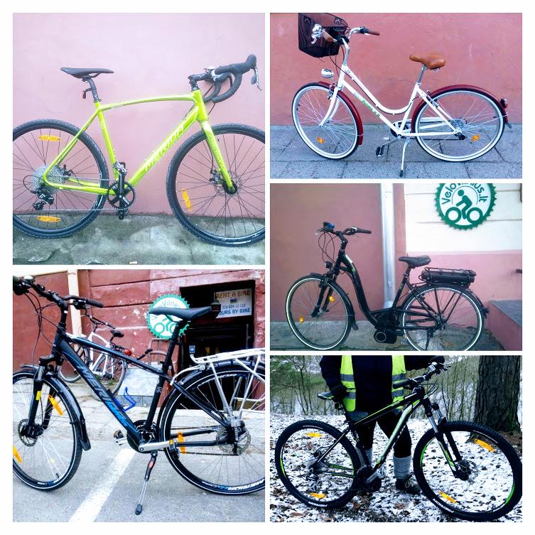 types of rental bicycles