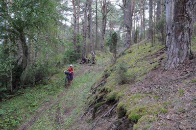 MTB turai (Kalnų dviračiais), nuo 2018 metų - kasdien!