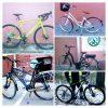 (English) Rental bike types 2020